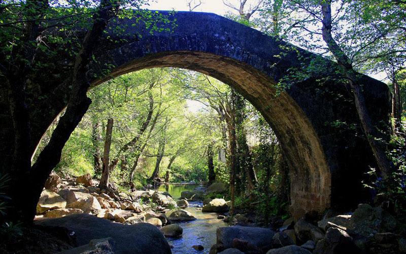 Monplamar-Algeciras-rio-de-la-Miel-Paco-Gallardo