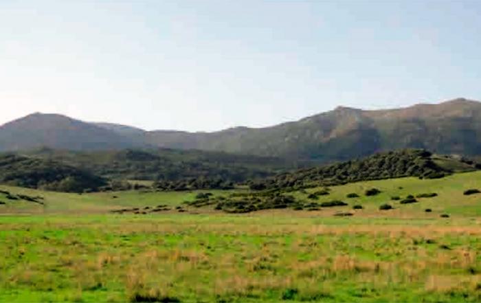 sendero-Puerta-Verde-de-Algeciras