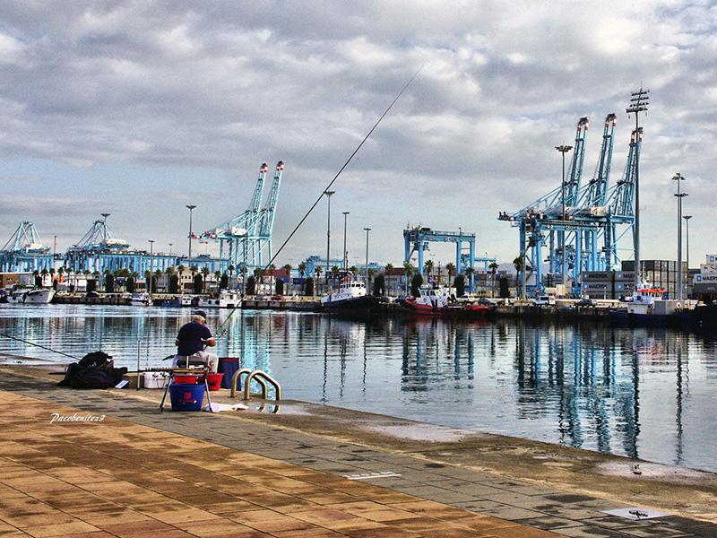 Monplamar el digital tur stico del campo de gibraltar - Puerto de algeciras hoy ...