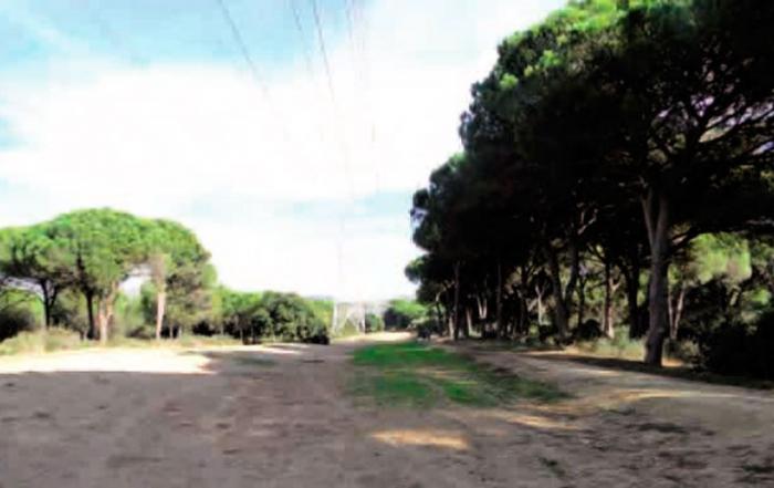 senderos-San-Roque