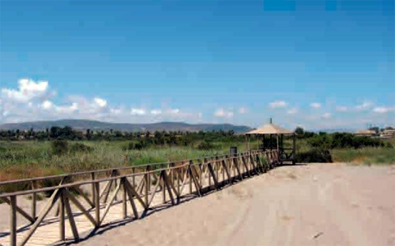 senderos-estuario-del-Guadiaro