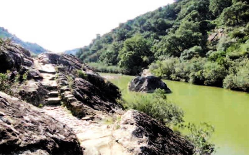 sendero-rio-Hozgarganta-Jimena-de-la-Frontera