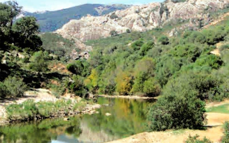 senderoVereda-de-Ubrique-Asomadillas