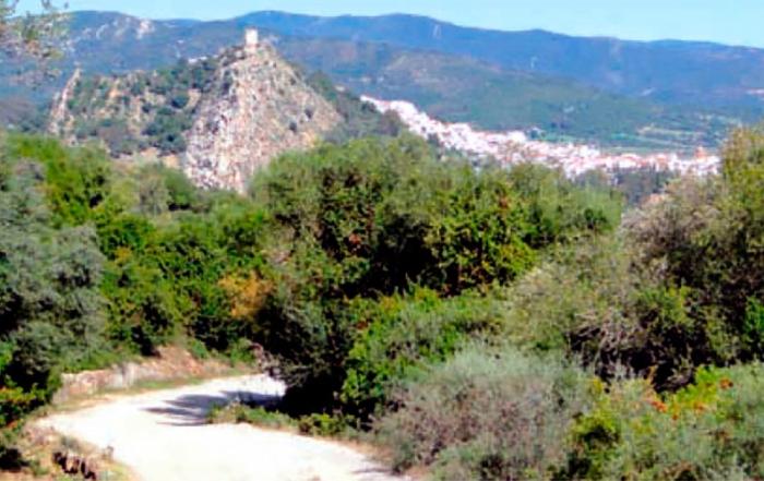 Jimena-sendero-Subida-a-Lomas-de-Camara