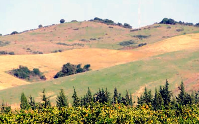 sendero-Lomas-Ganaderas-de-Jimena-de-la-Frontera