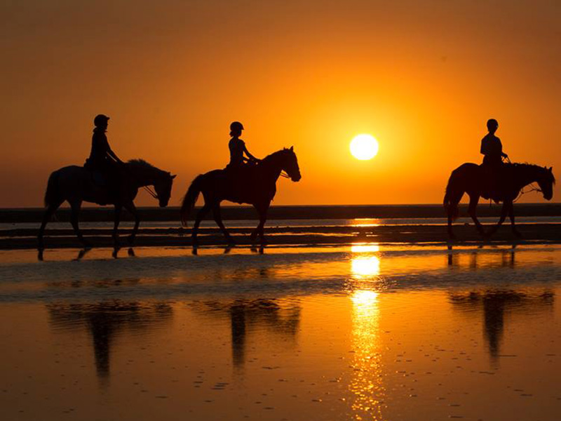 Monplamar-otoño-caballos-playa-foto-de-Jose-Maria-Caballero