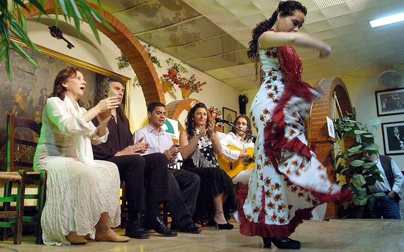 flamencos foto de Cadiz Turismo