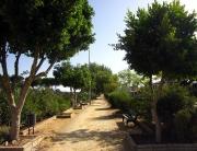 Benalup-Casas-Viejas-foto-Oficina-de-Turismo