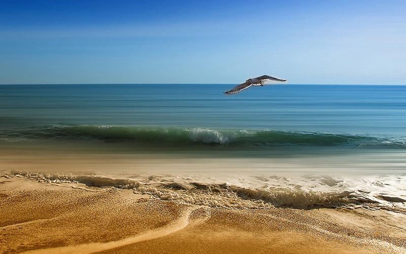 primavera mar turismo vacaciones