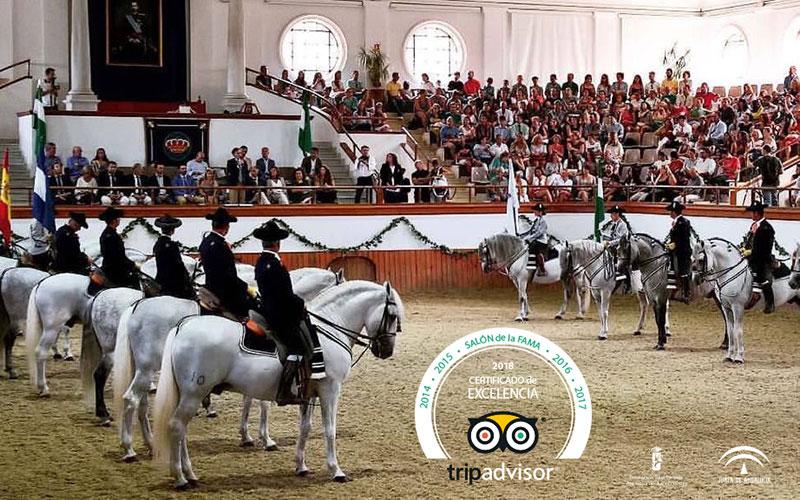 Jerez-Real-Escuela-de-Arte-Ecuestre-TripAdvisor