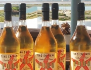 Monplamar vino Yodo de Aponiente y Bodegas Lustau