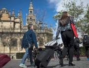 andalucia-turistas-foto-de-junta-de-andalucia-pr