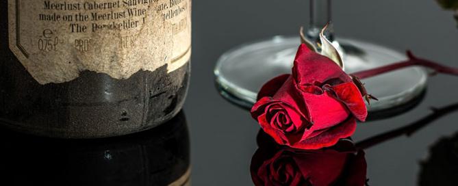 rosa-de-San-Valentin