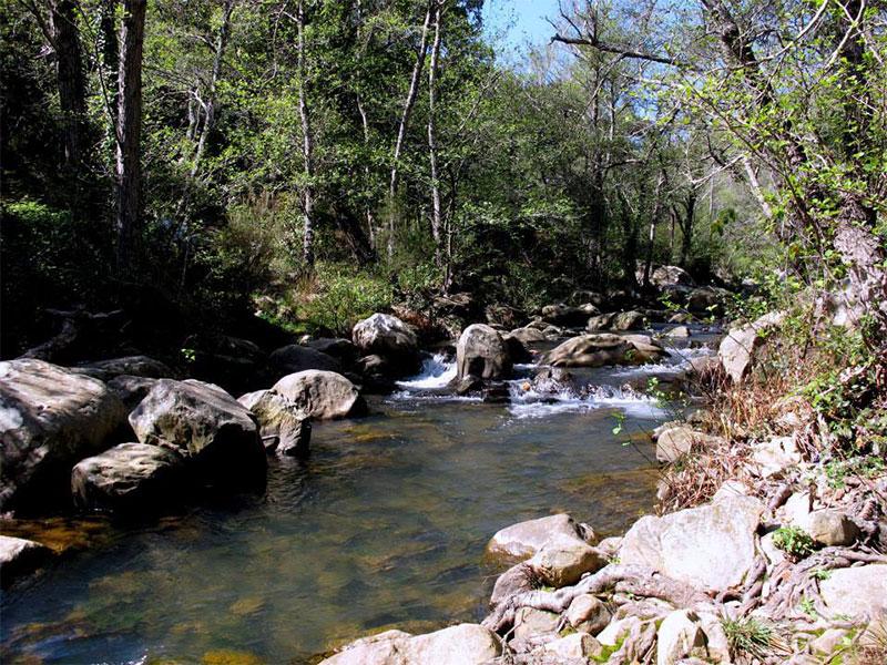 Sendero-del-río-de-la-Miel