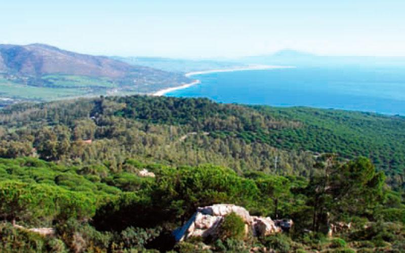 Tarifa-sendero-Los Algarbes-Betijuelo