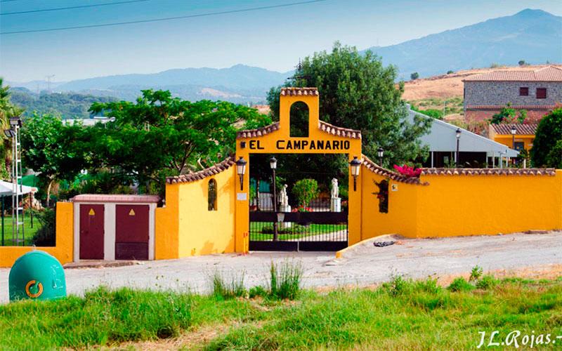 Los-Barrios-Celebraciones-El-Campanario