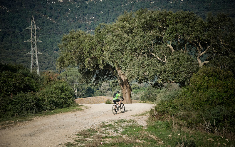 ruta-senderismo-algeciras-tarifa-camino-interior