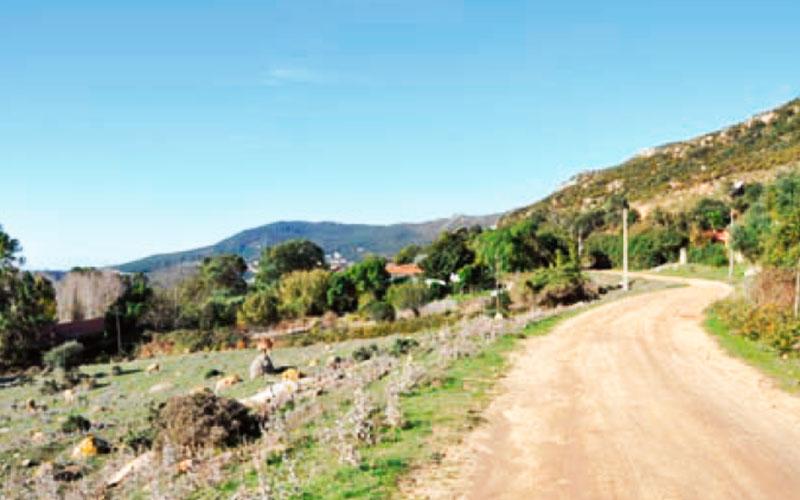 Sendero-Tarifa