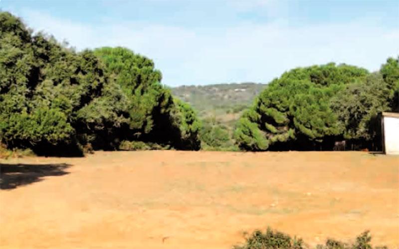 senderos-Tajo-del-Pajarraco