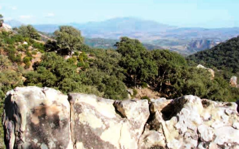 sendero-Jimena-de-la-Frontera