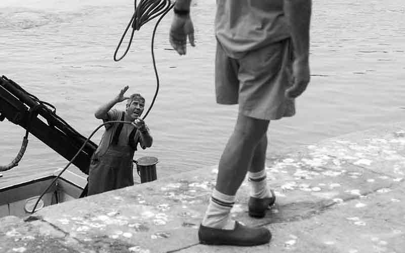 pescadores lonja de Cadiz foto de Oscar Cardenas