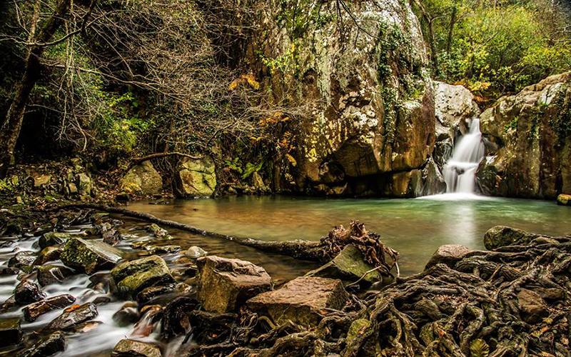 Algeciras-rio-de-la-Miel-foto-de-Francisco-Luis-Ramos-Juana