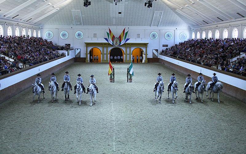 caballos-Jerez-foto-de-Junta-de-Andalucia