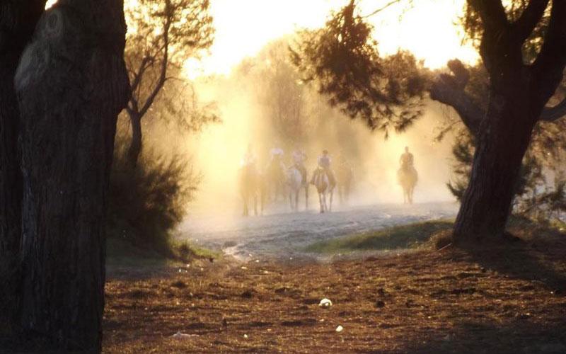 El-Rocio-foto-de-Junta-de-Andalucia
