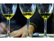 aceite-de-oliva-foto-de-Junta-de-Andalucia