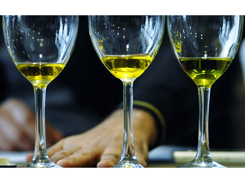 Andalucía es aceite de oliva (Junta)