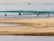 playas-mariscadores-coquinas-foto-de-Junta-de-Andalucia
