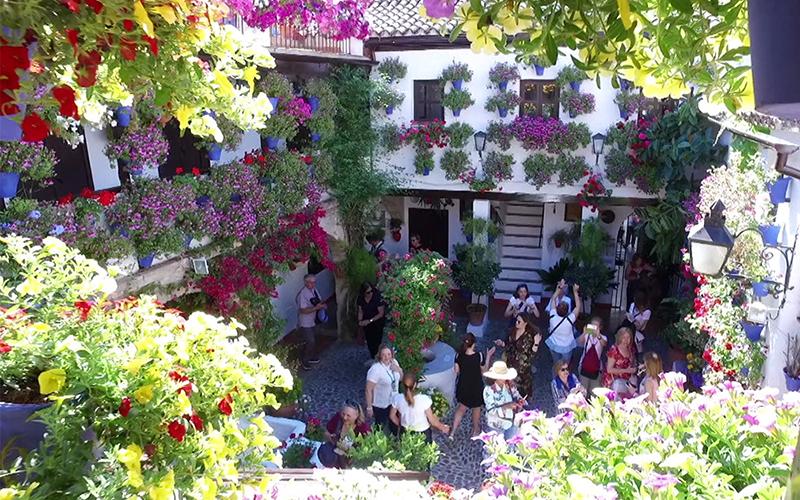 patio-cordobes-foto-de-Junta-de-Andalucia