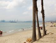 playa-de-Palmones-foto-de-Ayto-Los-Barrios