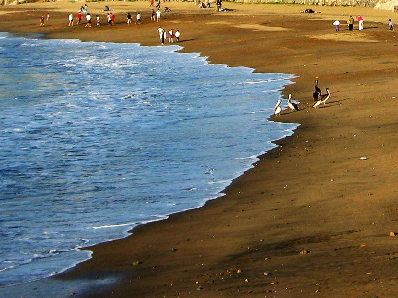 Los dueños de la playa en otoño (José Luis G. Castillejo)