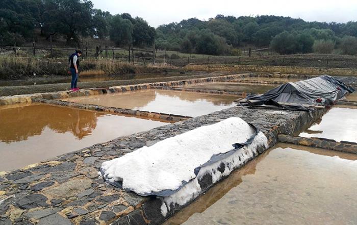 Prado-del-Rey-salinas-de-Iptuci-foto-de-Junta-de-Andalucia-1