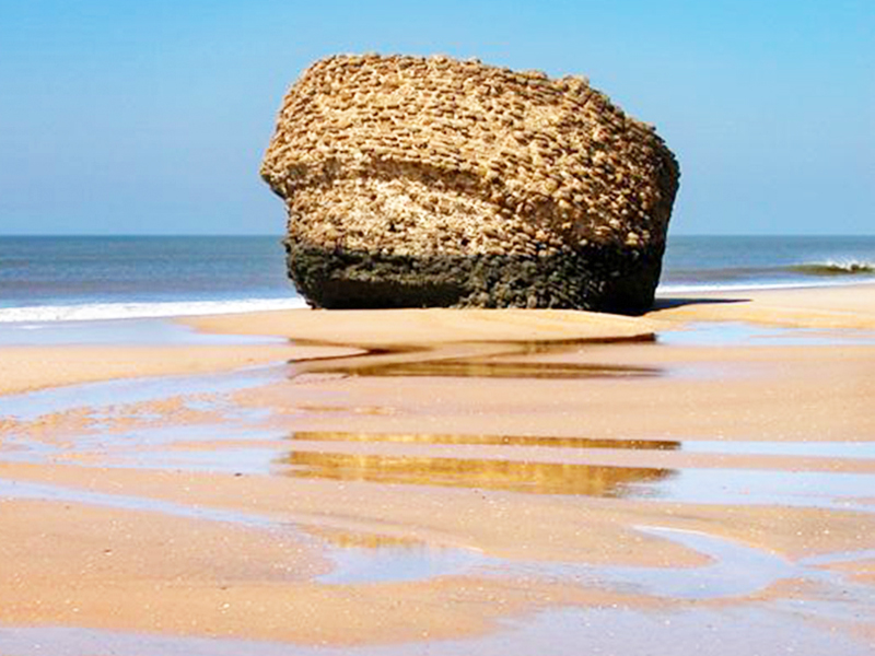 Playa de Matalascañas. En Almonte, Huelva (Junta)