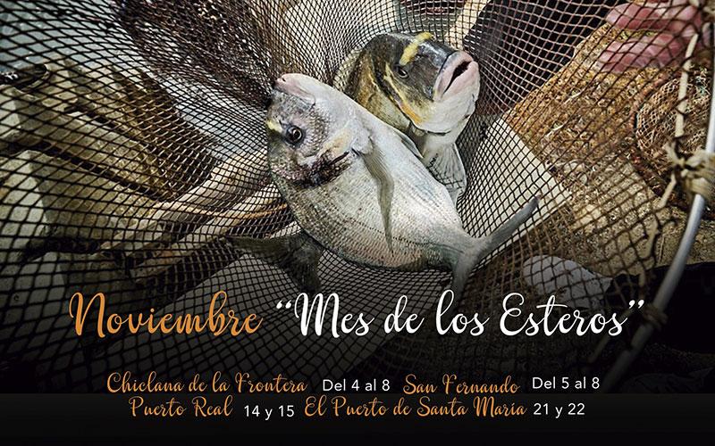 Cádiz-noviembre-2020-mes-de-los-esterios