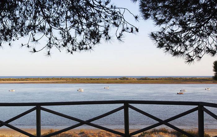 Lengua-de-El-Rompido-Cartaya-Huelva-foto-de-Junta-de-Andalucia
