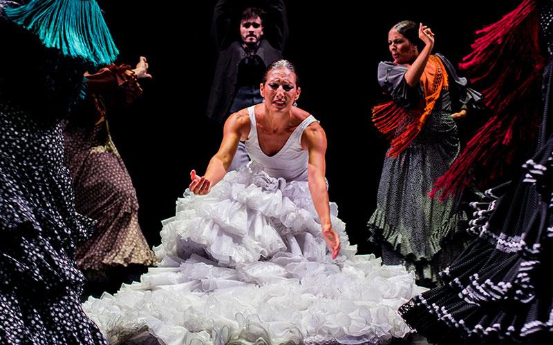 flamenco-foto-de-Junta-de-Andalucia