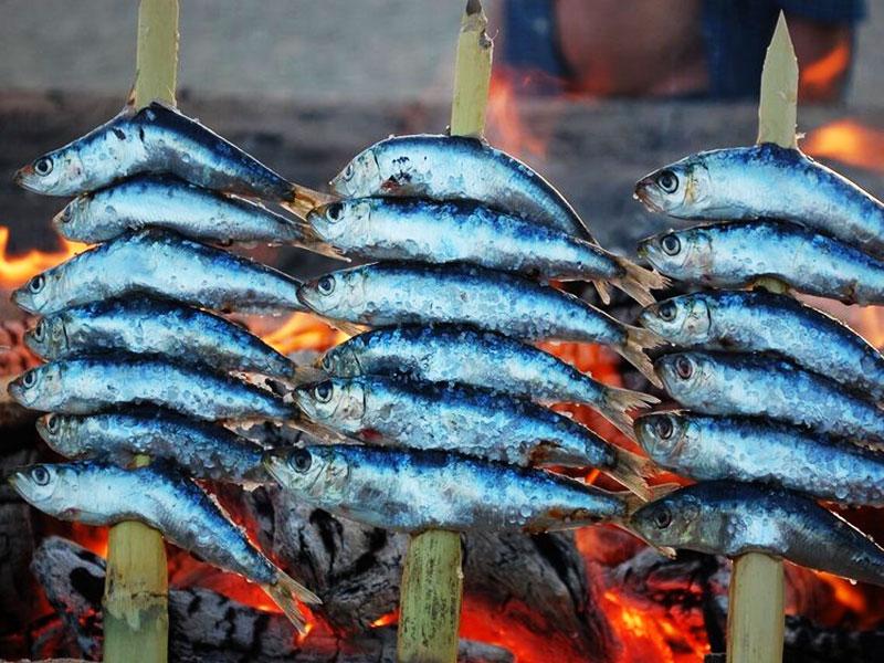 espeto-sardinas-Malaga-foto-de-Junta-de-Andalucia