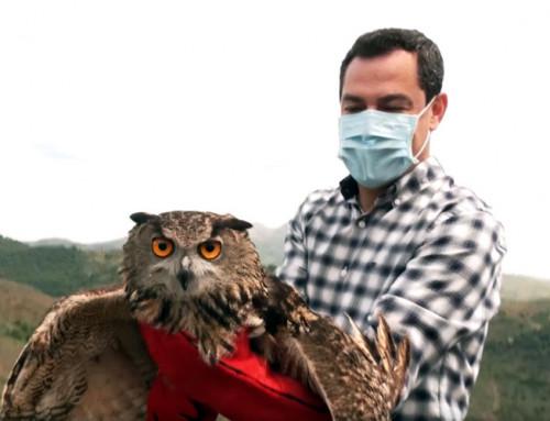 Moreno asistió a una suelta de aves rapaces